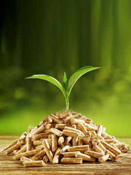 Biomasa, Calderas y Estufas de interior- Moneleg